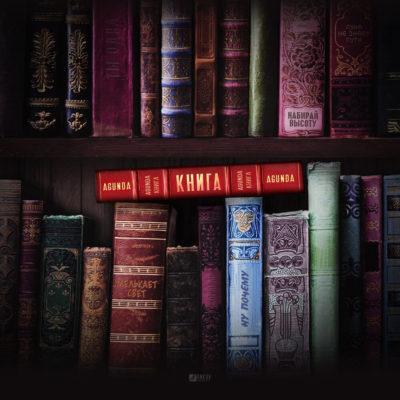 Книга - Agunda