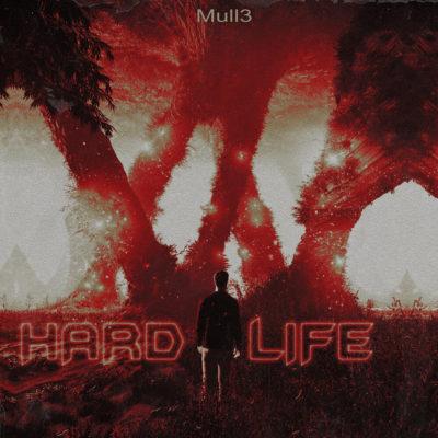 Hard Life - Mull3